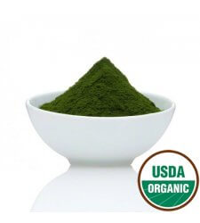 WHEATGRASS JUICE Organic Powder 4oz (112g)
