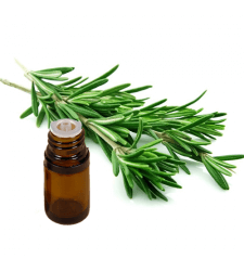 ROSEMARY CINEOLE Type Essential Oil .5 oz