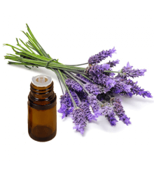 LAVENDER Pure Essential Oil 0.25 fl oz
