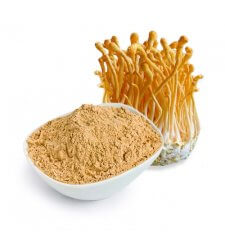 CORDYCEPS Mushroom Powder (Superfood)